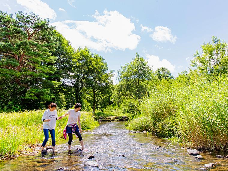 フィールド内には小川が流れているので、水遊びもできる