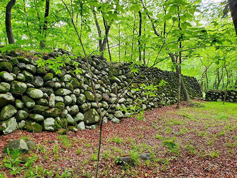 これが「霞提」。堤防であることを知らないと、「なにこれ、城壁?」と勘違いしそうなほど立派。ちなみに、土木遺産や有形文化財に登録されているほど歴史的価値も高い。以前このコラムで紹介した「福島市民家園」にも霞提の一部があります
