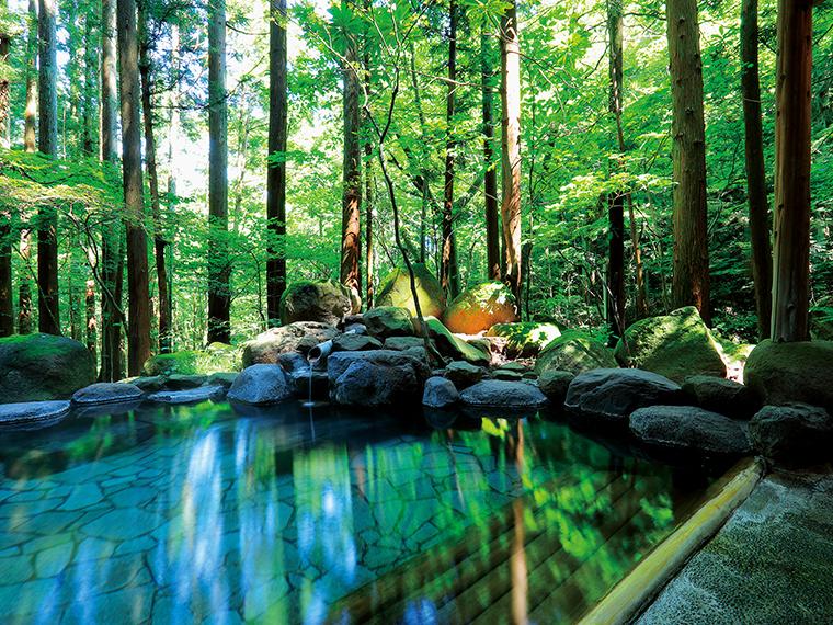 幻想的な杉林に囲まれた露天風呂。奥には渓流沿いの小露天風呂もあり、この開放感を贅沢にも貸切で独占できる