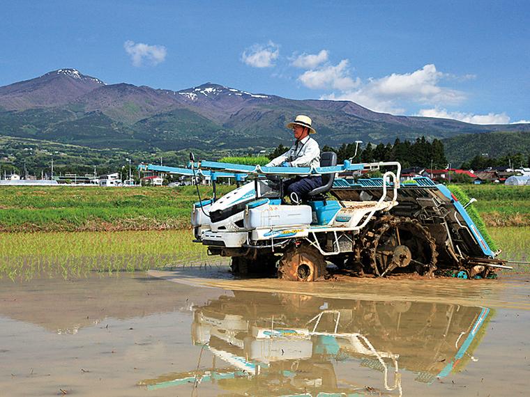 平成29年度最優秀賞「大玉大地の米作り」(伊藤留夫)