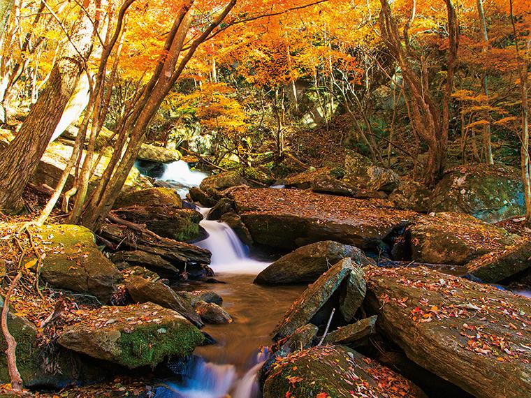 東北最南端の秘境と呼ばれる滝川渓谷。表情の異なる48滝を観瀑することができる