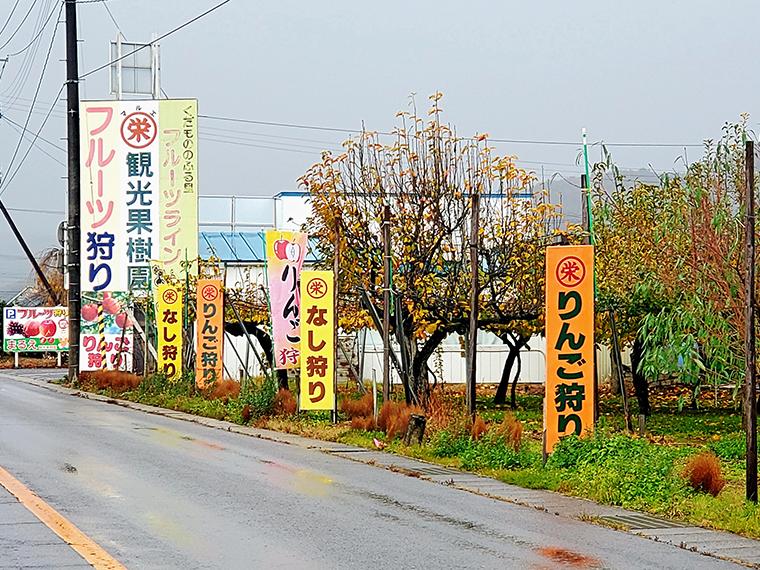 フルーツラインには果物狩りをやっている果樹園がたくさん。道沿いには福島県外から来た観光客に一生懸命アピールしてる看板があちこちに
