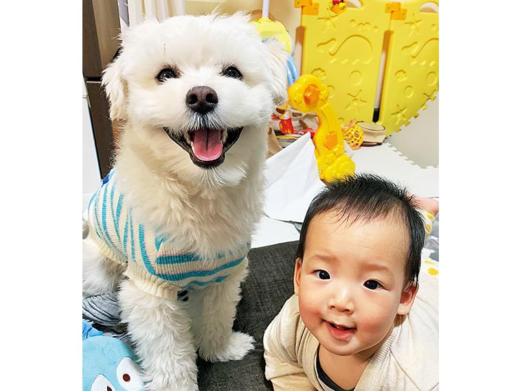 左がグランプリに輝いた、衣(ころも)くん(1歳10ヵ月・オス)。飼い主・成尾さんご一家の長男・敬世くんと一緒に