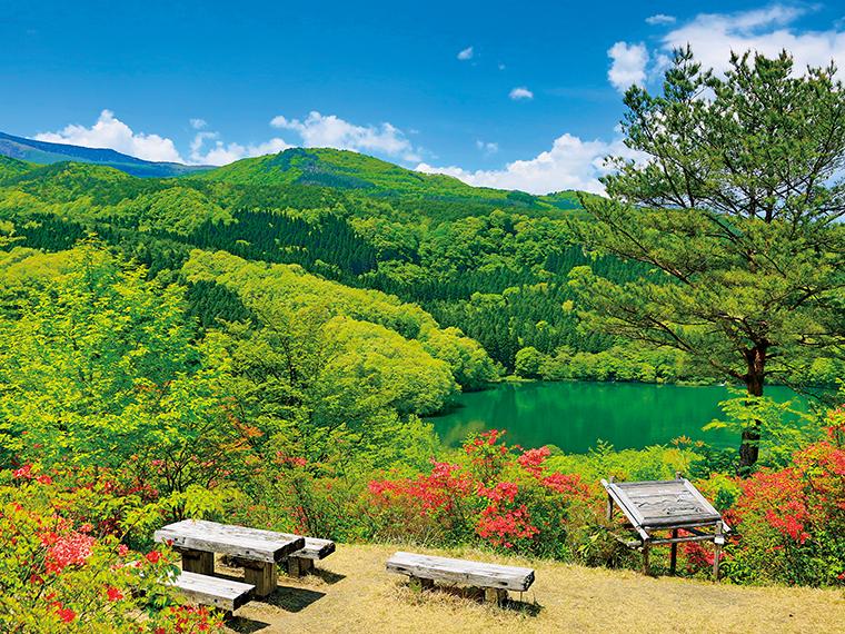 「女沼男沼」コース内の「つつじ山公園」(福島市)