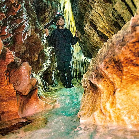 鍾乳洞の一番奥へ進むCコースはガイド案内付きとなるため要予約
