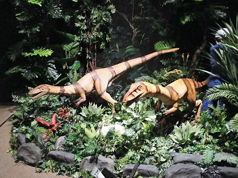 等身大の動いて吠える恐竜ロボット