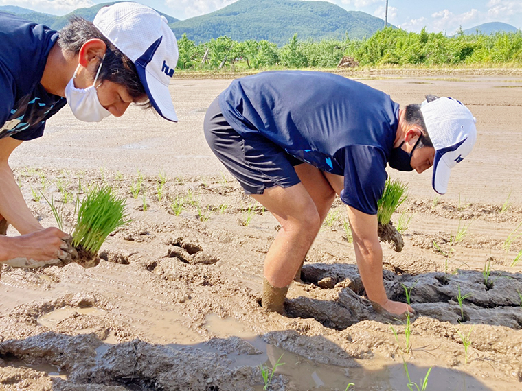 (1)【福島ユナイテッドFC農業部】福島ユナイテッドFCのお米…1名様