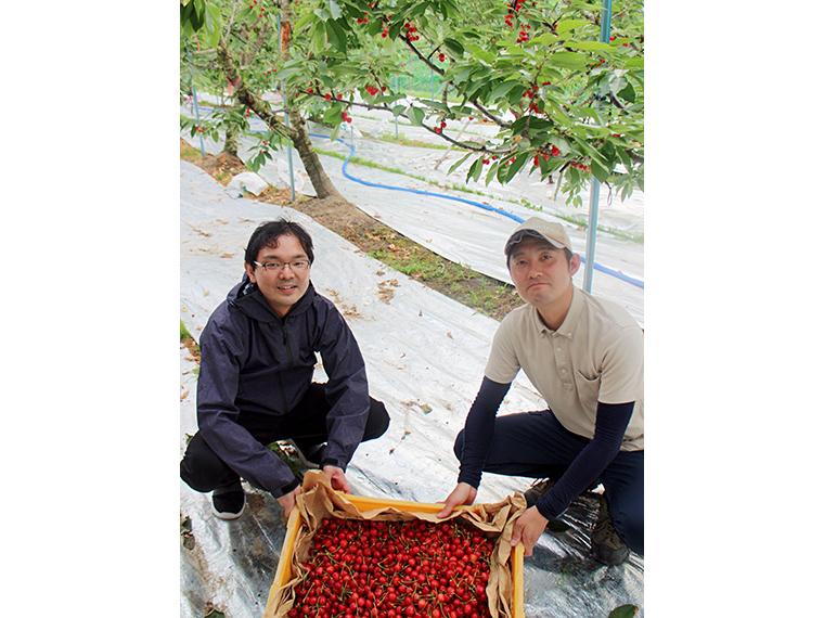 (17)【ふくしま果樹加工考案室】旬のフルーツソース5本セット…1名様